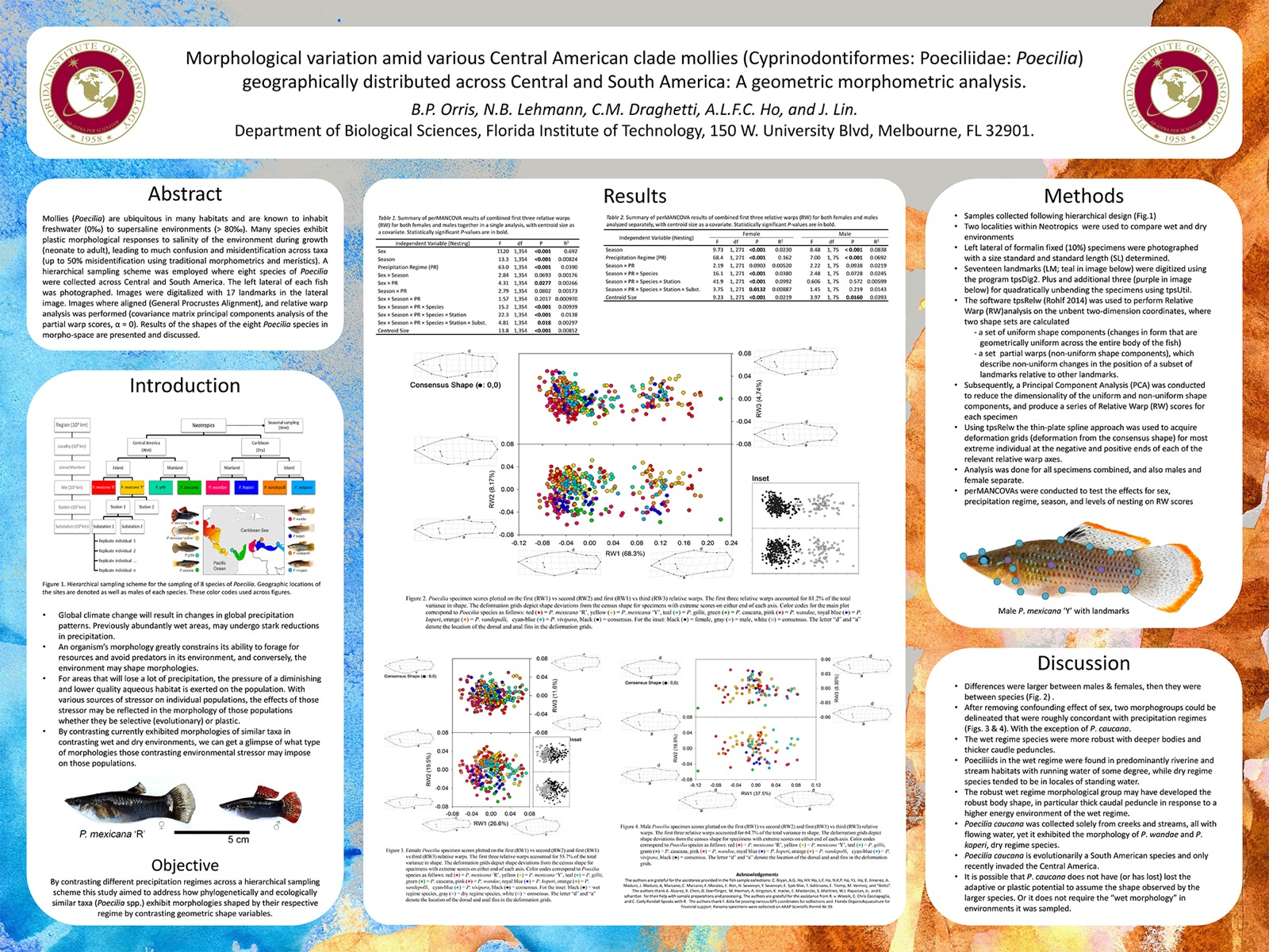 Poster design guidelines - Example Poster For Masna Scientific Poster Session