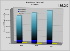 Kauai-Rec-Reef-Catch