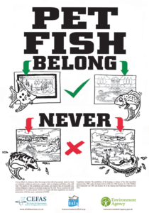 The 'Pet Fish Belong' campaign. A UK initiative from the Ornamental Aquatic Trade Association (OATA)