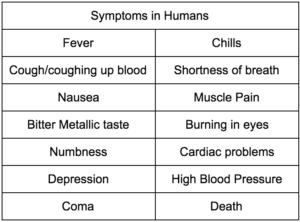 Palytoxin Symptoms in Humans