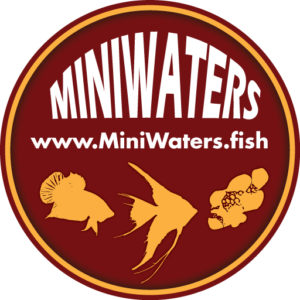 logowork5_miniwaters-fish_512_x_512